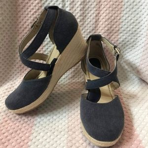 Blue Cross wedges
